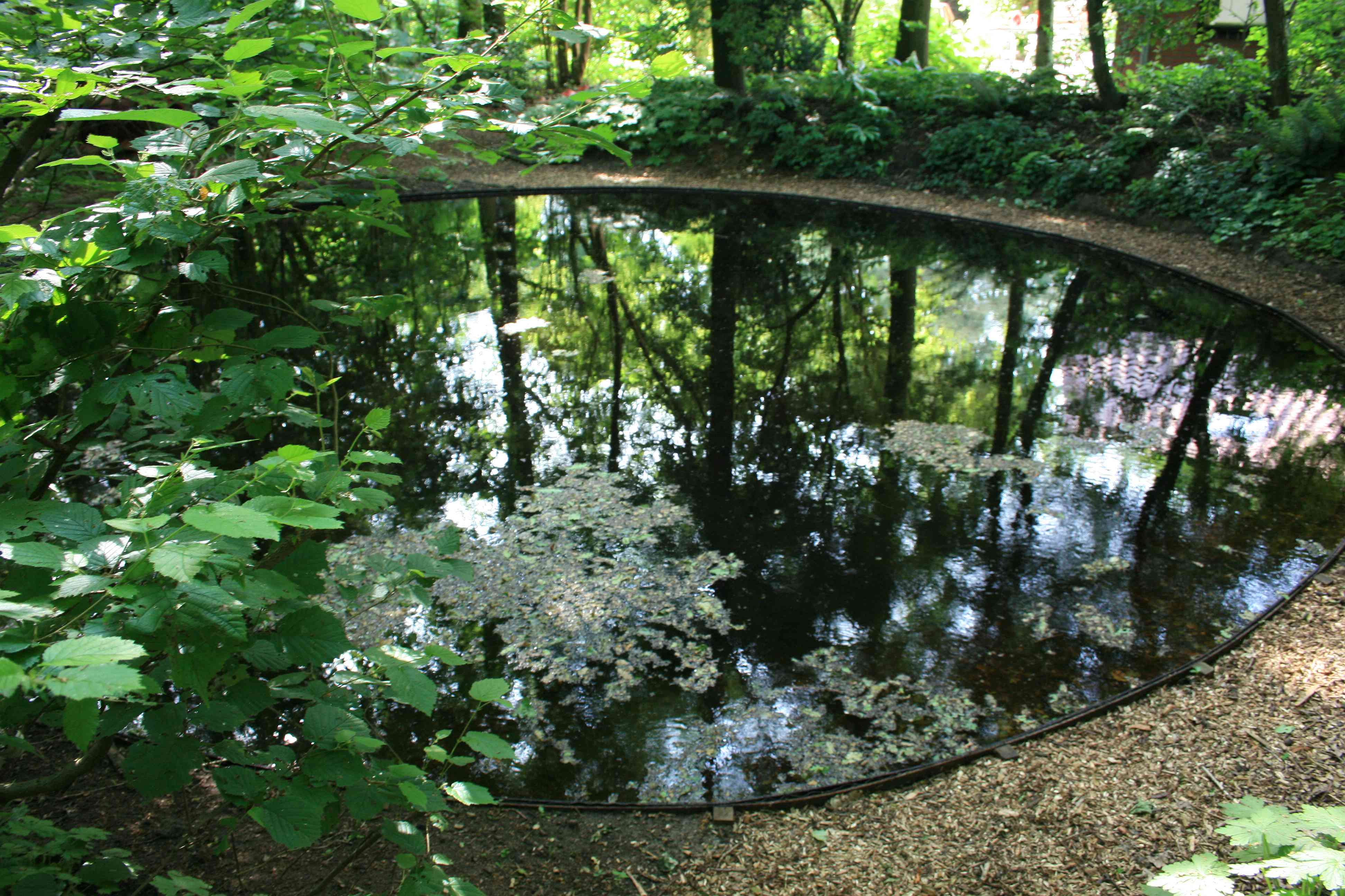 Tijd Voor Tuin : Foto s tuin van de tijd bunne het tuinpad op in nachbars garten