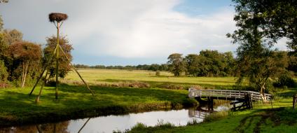 Natuurgebieden in Drenthe